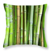 Bamboo Background Throw Pillow
