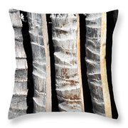 Bamboo Fence Throw Pillow