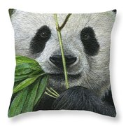 Bamboo Foodie Throw Pillow