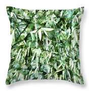 Bamboo Forest In South Carolina Throw Pillow