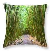 Bamboo Forest Trail Hana Maui 2 Throw Pillow