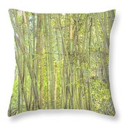 Bamboo In San Diego Zoo Throw Pillow