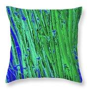 Bamboo Johns Yard 21 Throw Pillow