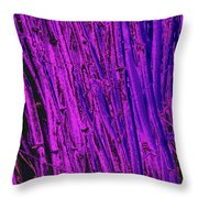Bamboo Johns Yard 24 Throw Pillow
