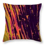 Bamboo Johns Yard 8 Throw Pillow