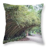 Bamboo Overhang Path  Throw Pillow