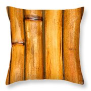 Bamboo Poles Throw Pillow by Yali Shi