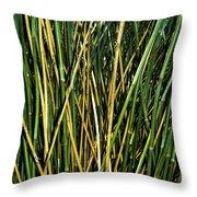 Bamboo Shoots  Throw Pillow