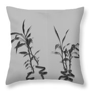 Bamboo Shutes Throw Pillow