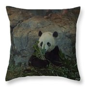 Bamboo Thats For Dinner Throw Pillow