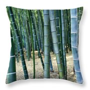 Bamboo Tree Forest, Close Up Throw Pillow
