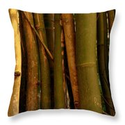 Bambusa Vulgaris Throw Pillow