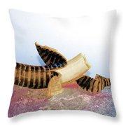 Banana Art 1 Throw Pillow