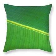 Banana Leaf Throw Pillow by Dana Edmunds - Printscapes
