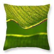 Banana Leaf Lines Throw Pillow