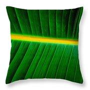 Banana Plant Leaf Throw Pillow