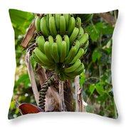 Bananas In Africa Throw Pillow