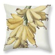 Bananas Throw Pillow by Pierre Joseph Redoute