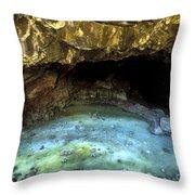 Bandera Ice Cave Throw Pillow
