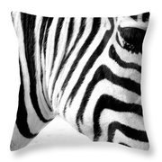 Banding Throw Pillow