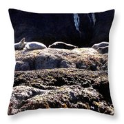 Bandon 11 Throw Pillow