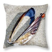 Bandon 13 Throw Pillow