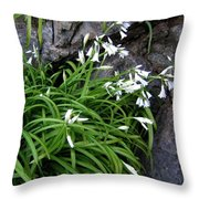 Bandon 9 Throw Pillow