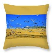 Bandon Gulls Throw Pillow