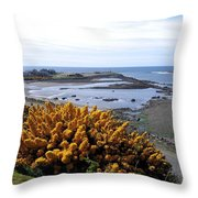 Bandon Harbor Entrance Throw Pillow