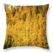 Banff Golden Larch Dream World Throw Pillow