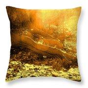 Banishing Rain Forest Shadows Throw Pillow
