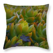 Bank Of Succulents Throw Pillow