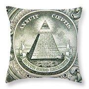 Banknote Detail Throw Pillow