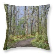 Banks Of Loch Lomond, Scotland Throw Pillow