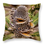 Banksia Cone Throw Pillow