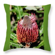 Banksia In Red Throw Pillow