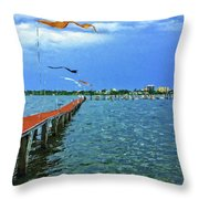 Banners Flying Throw Pillow
