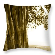 Banyan Surfer - Triptych  Part 2 Of 3 Throw Pillow