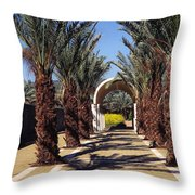 Baptism Site Of Christ On The Jordan River Throw Pillow