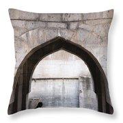 Baramotachi Vihir Historic 12 Channel Flow Well Throw Pillow
