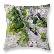 Barbados Beach Life Throw Pillow
