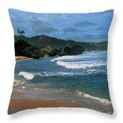 Barbados Berach Throw Pillow