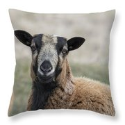 Barbados Blackbelly Sheep Portrait Throw Pillow