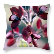 Barbed Thermopsis Or Black Pea Throw Pillow