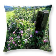 Barbed Wire And Roses Throw Pillow
