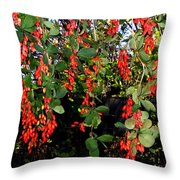 Barberries Throw Pillow