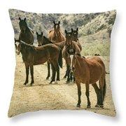 Barcus Creek Band Throw Pillow