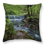 Bard Springs Throw Pillow