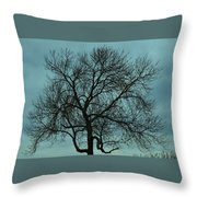 Bare Branches And Storm Clouds Throw Pillow