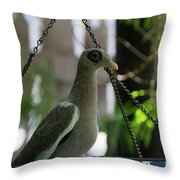 Bare Eyed Pigeon Throw Pillow